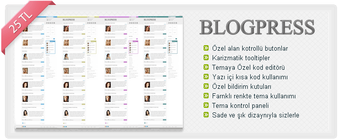 blogpress-wordpress-teması