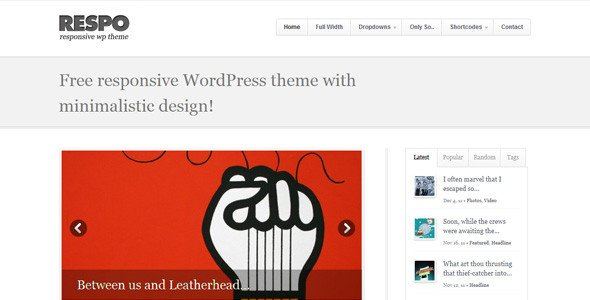 Responsive-WordPress-Theme-4
