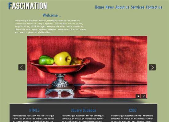 Free HTML5 CSS3 Templates
